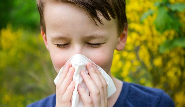 allergia alle fragole sintomi